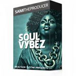 Soul Vybez - Sample Pack Kit